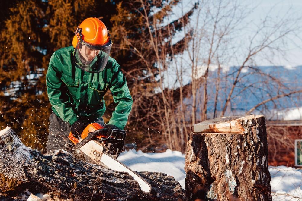 Profesionální řetězové pily v lese