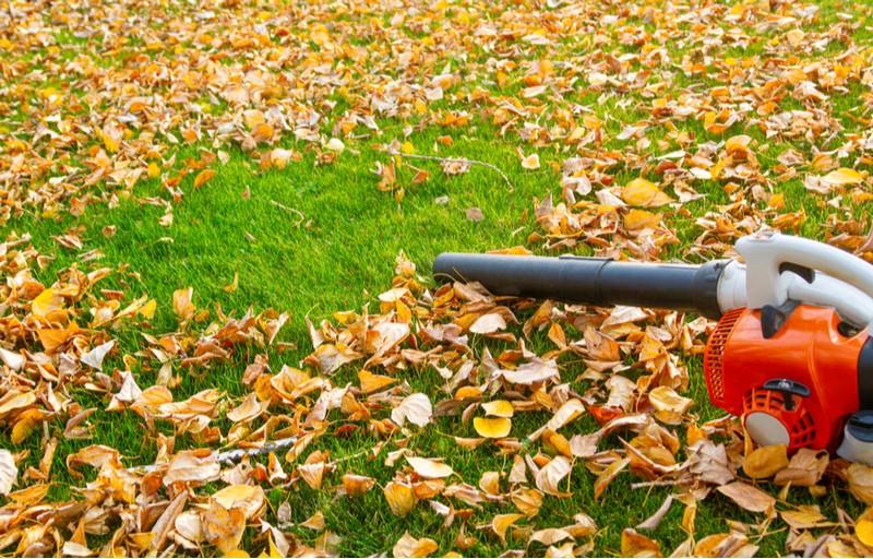 podzim, listí a vysavač listí