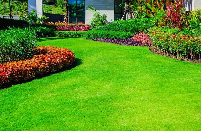 Rozloha trávníku