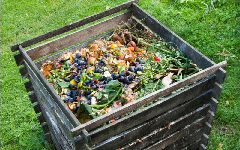 Dřevěný kompostér na zahradě