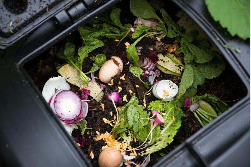 kuchyňský odpad v kompostéru