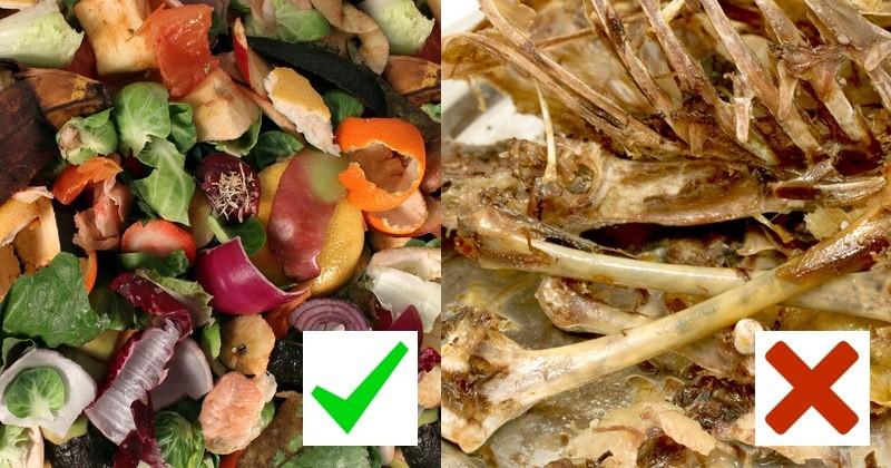 zelenina a ovoce patří do vermikompostéru ale maso a kůže ne