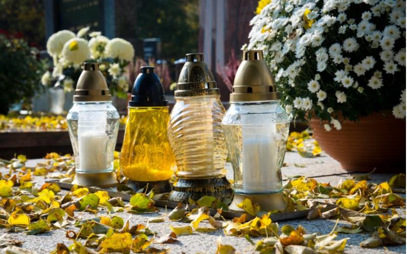 Chryzantémy na hrobech