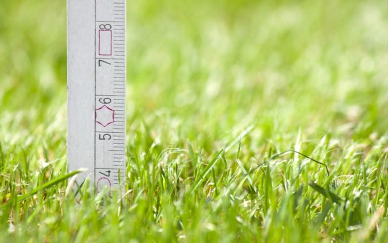 Optimální výška sečení trávy