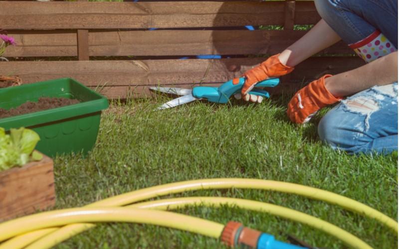 použití ručních nůžek na trávu