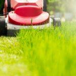 Sekání trávníku je základ - vše co potřebujete vědět
