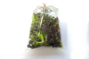 nafouknutý sáček se salátem Mesclun