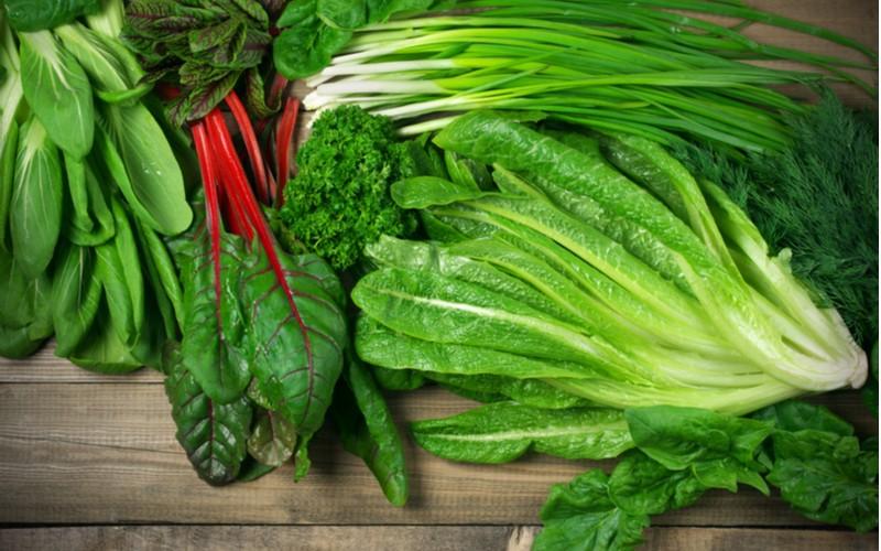 Různé druhy listové zeleniny