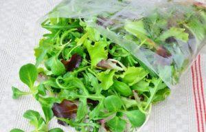 Čerstvý salát Mesclun