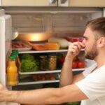 Jak se zbavit zápachu v lednici