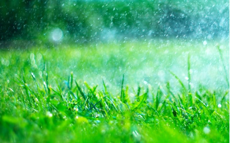 Závlaha trávníku je nezbytnost