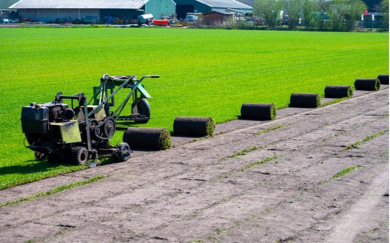 Trávníkový koberec - pěstování u výrobce