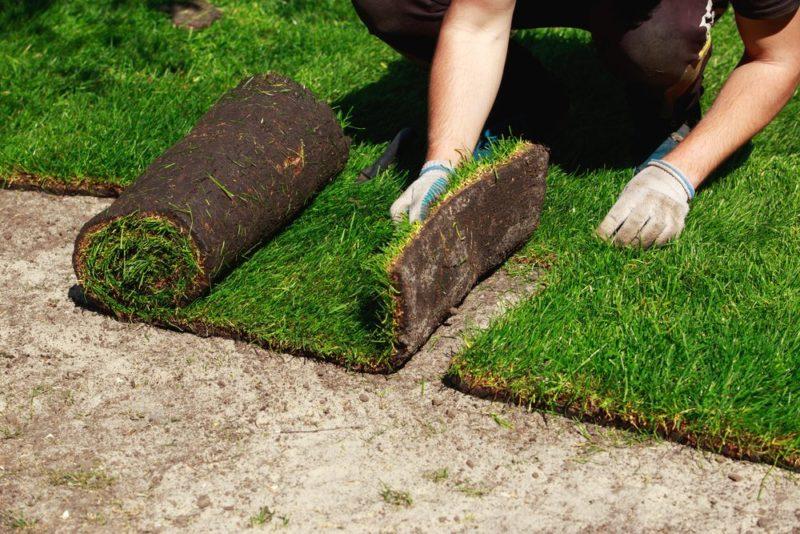 Trávníkový koberec - pokládka