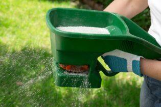 hnojení trávníku ručním rozmetačem