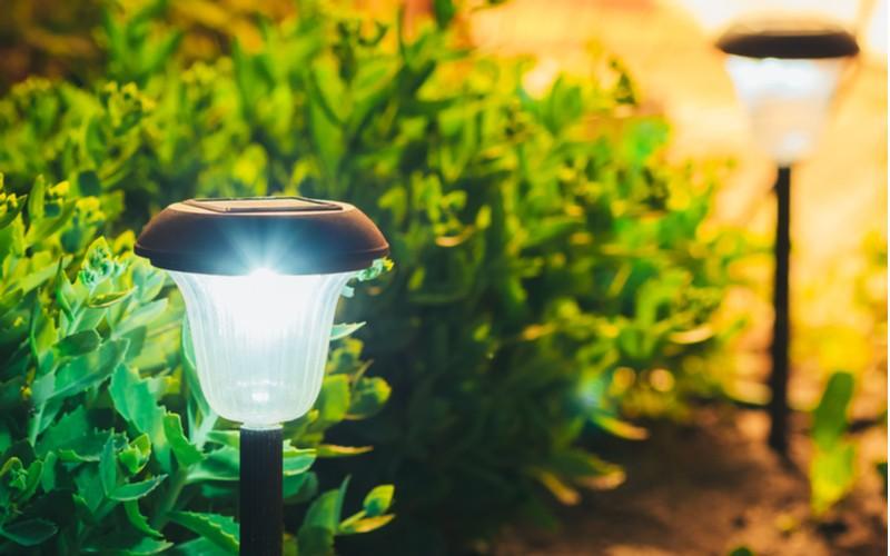 malé solární lampy u chodníku