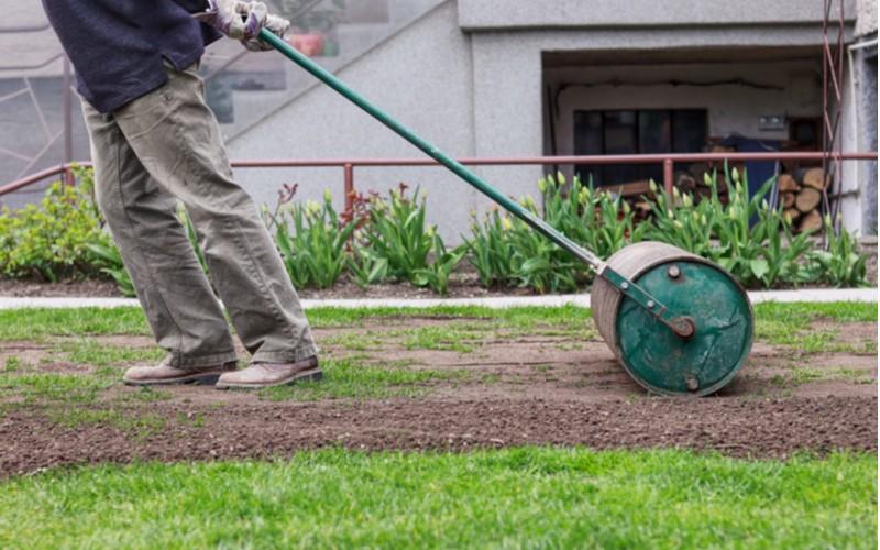 Jak založit trávník - příprava před setím: válcování