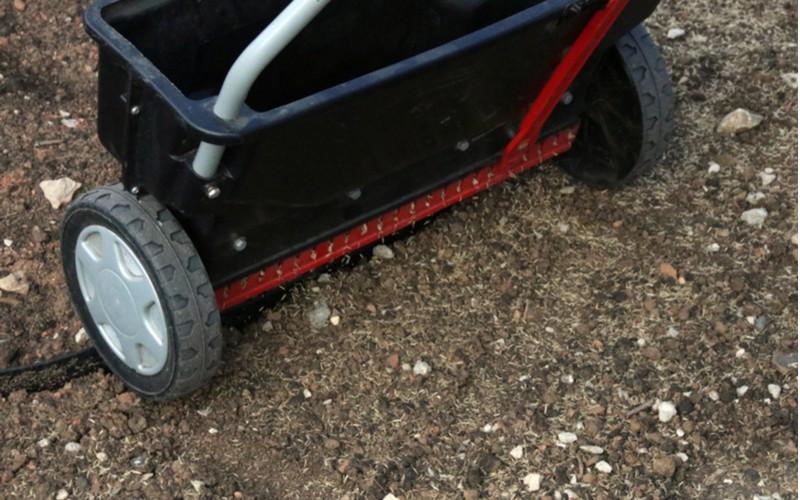 Jak založit trávník - setba trávníku