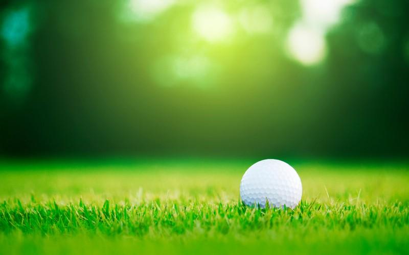 Sportovní trávník - golfové hřiště