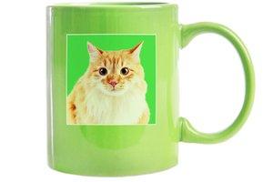 Vtipný zelený hrnek s kočkou